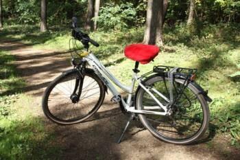 siedzisko rowerowe 1